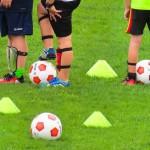 運動と学習効果